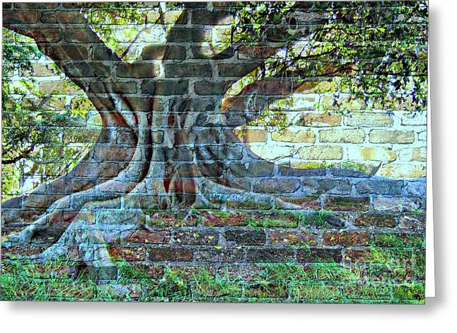 Tree On A Wall Greeting Card