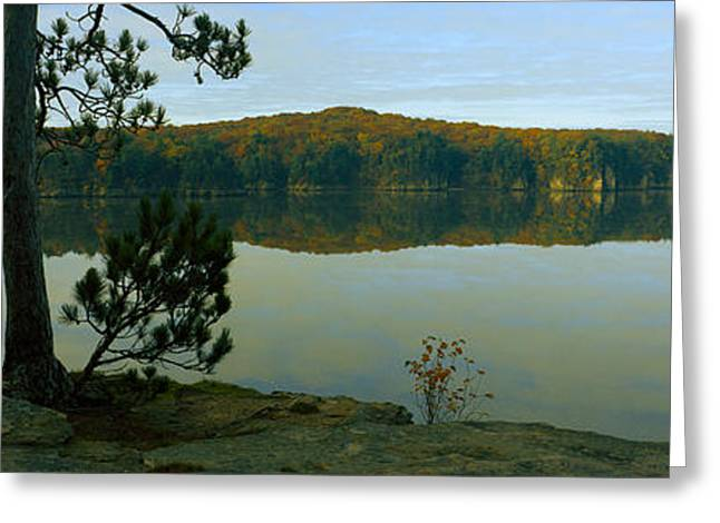 Tree On The Riverside, Wisconsin River Greeting Card by Panoramic Images