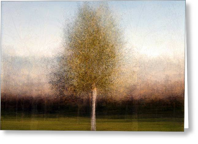 Tree One Greeting Card by Denis Bouchard
