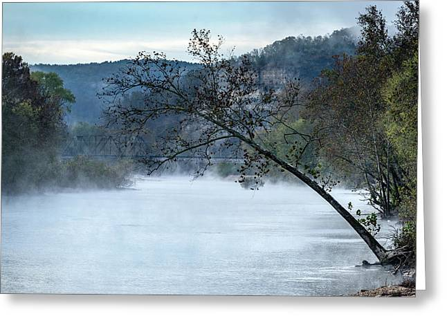 Tree Over Gasconade River Greeting Card by Jae Mishra