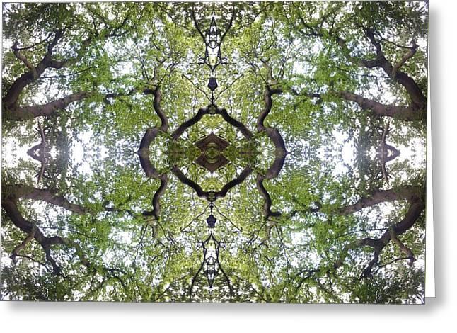 Tree Photo Fractal Greeting Card
