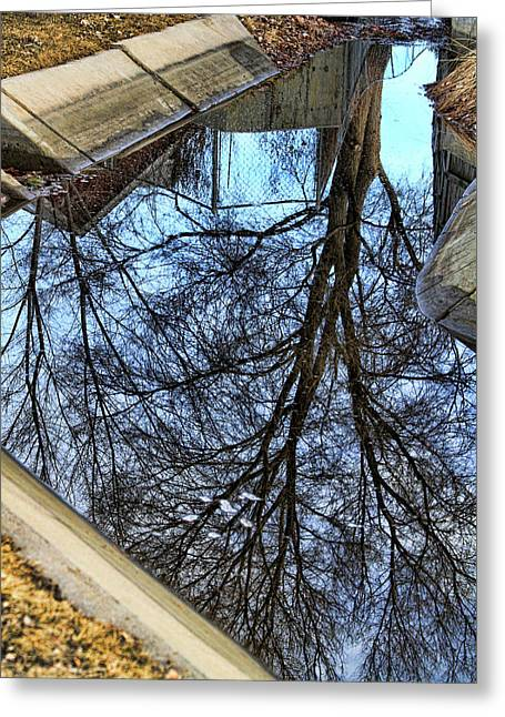 Buy Posters Online Greeting Cards - Tree Reflection From No Where Photography Image Greeting Card by James BO  Insogna