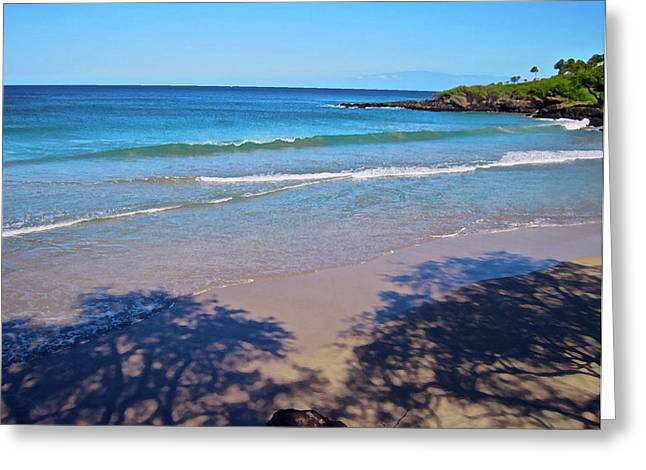 Tree Shadows At Hapuna Beach Greeting Card