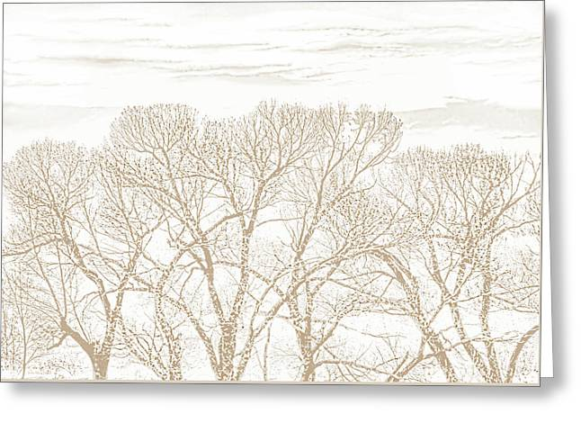 Greeting Card featuring the photograph Trees Silhouette Brown by Jennie Marie Schell