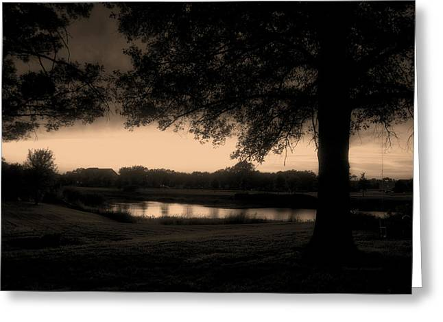 Tree Silhouette By The Pond Sepia Greeting Card by Thomas Woolworth