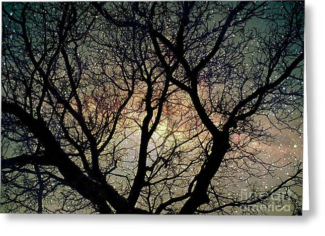 Greeting Card featuring the photograph Tree Silhouette With Stars. by Yulia Kazansky