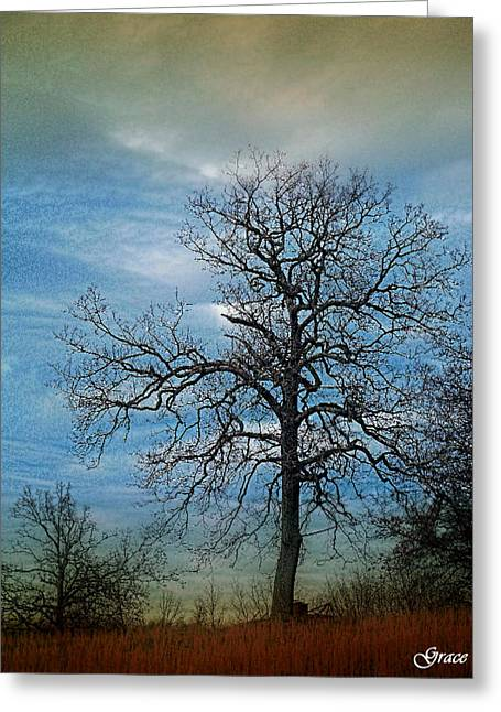 Tree Spirits Greeting Card by Julie Grace