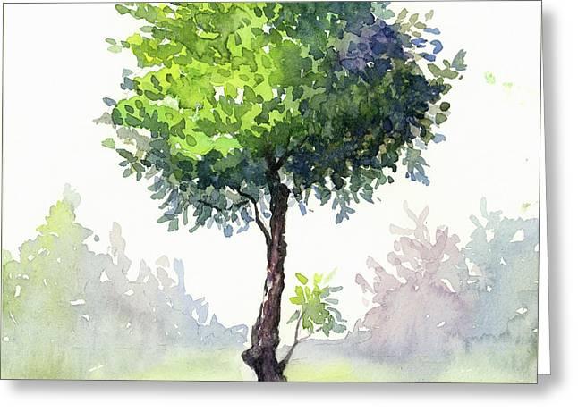 Tree Study Greeting Card by Taylan Apukovska