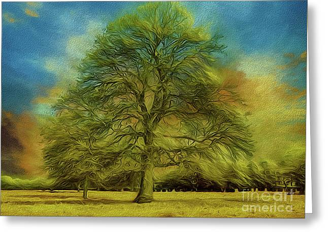 Tree Three Greeting Card