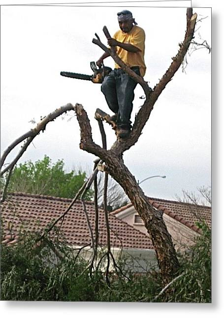 Tree Trimmer Greeting Card by Sam Chinkes