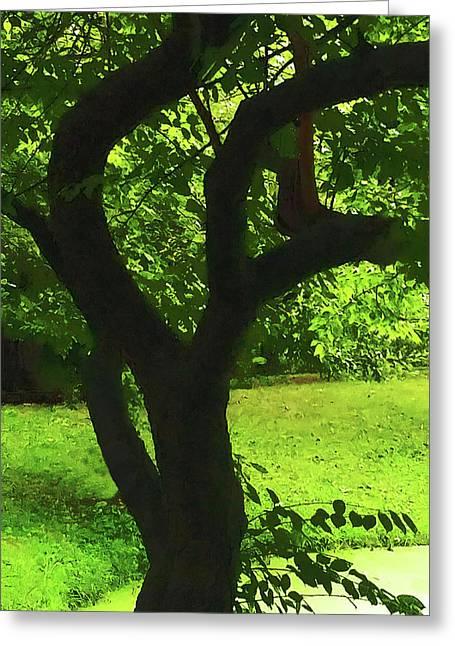 Tree Trunk Green Greeting Card