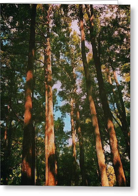 Tree Trunks Greeting Card