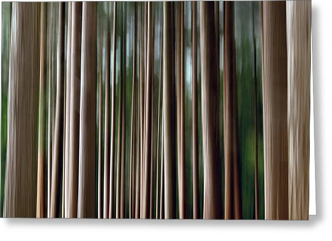 Tree Trunks Greeting Card by Wim Lanclus