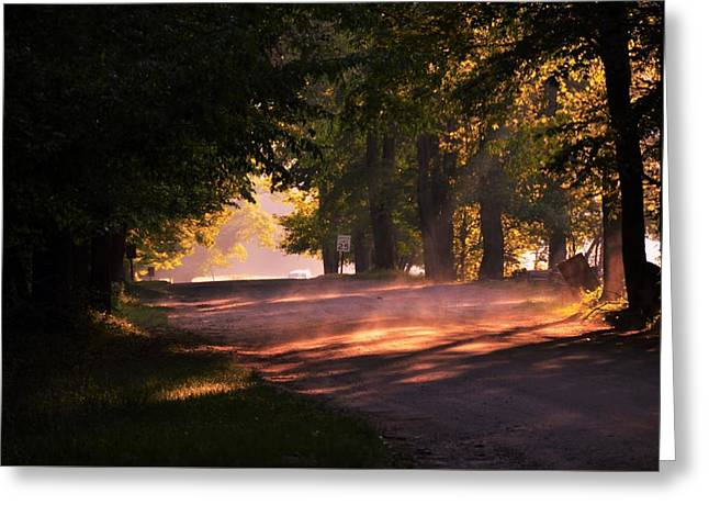 Tree Tunnel Greeting Card
