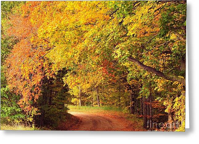 Tree Tunnel Heaven Greeting Card