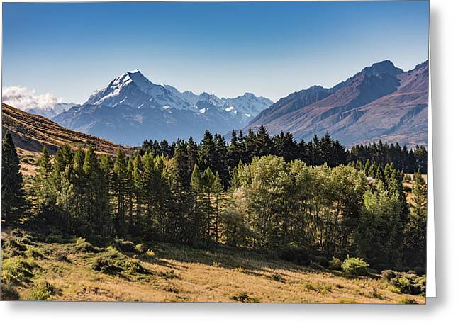 Greeting Card featuring the photograph Tree View Of Mt Cook Aoraki by Gary Eason