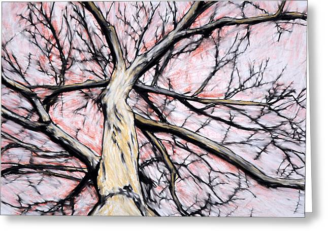 Tree With Red Sky Greeting Card by John Terwilliger