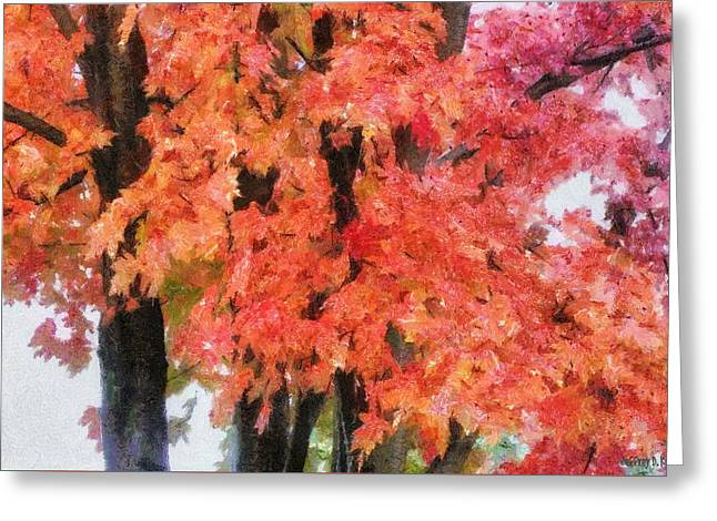 Trees Aflame Greeting Card by Jeff Kolker