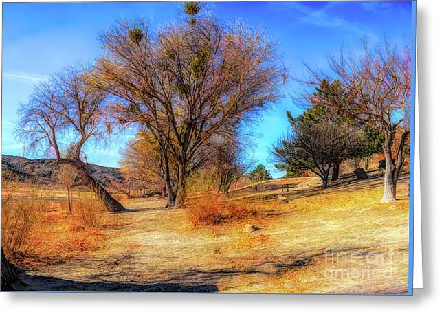 Trees Along Elizabeth Lake Greeting Card