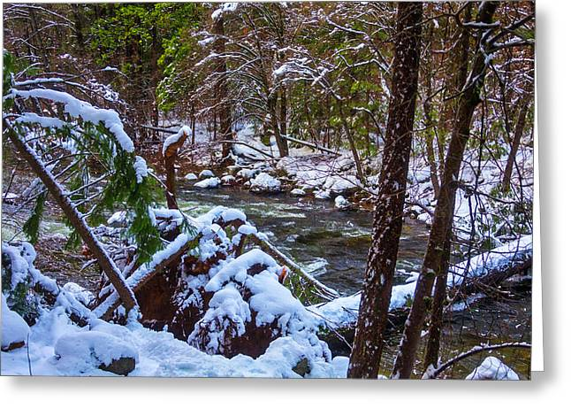 Trees Along The Merced River Greeting Card
