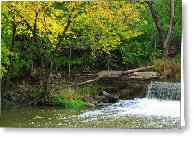 Trees And Dam Greeting Card by Michael L Kimble