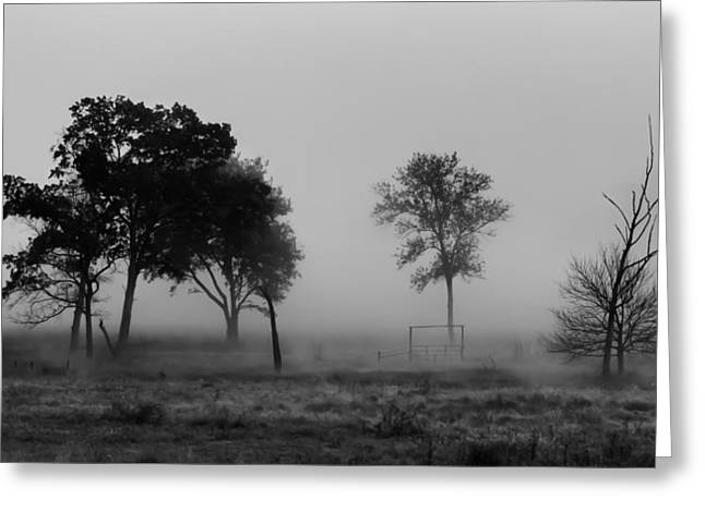 Trees And Foggy Morn Greeting Card