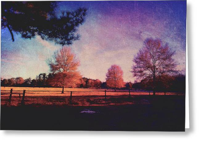 Trees And Pasture Greeting Card