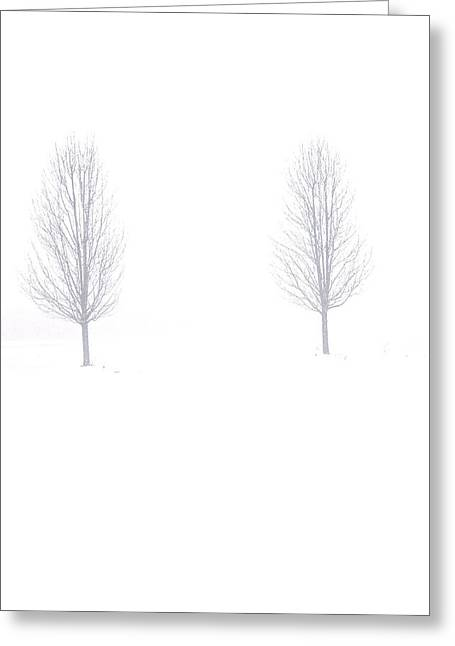 Greeting Card featuring the photograph Trees And Snow by Daniel Thompson