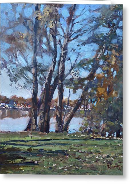 Trees By The River Greeting Card by Ylli Haruni