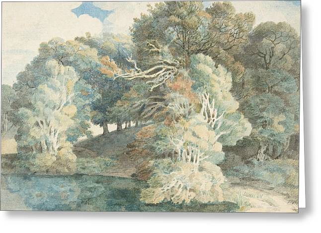 Trees By The Lake, Peamore Park, Near Exeter, Devon Greeting Card