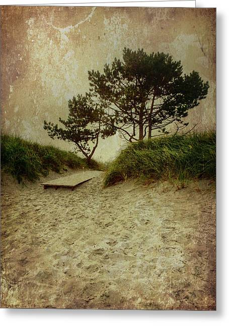 Trees By The Sea Greeting Card