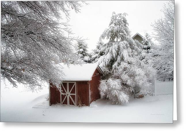 Trees Fresh Snow Fall In The Backyard Greeting Card by Thomas Woolworth