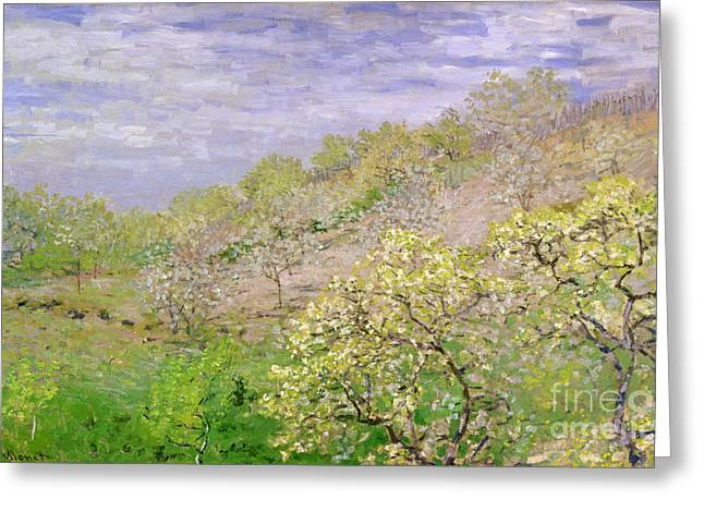 Trees In Blossom Greeting Card by Claude Monet