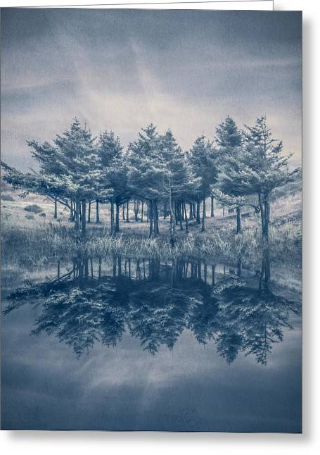 Trees In Blue Greeting Card