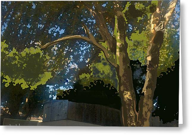 Trees In Park Greeting Card by Walter Chamberlain