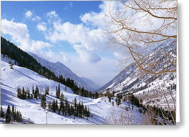 Trees In Snow, Snowbird Ski Resort Greeting Card by Panoramic Images