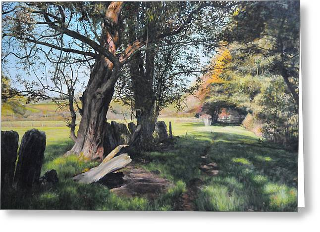 Trees Near Rhug. Greeting Card by Harry Robertson