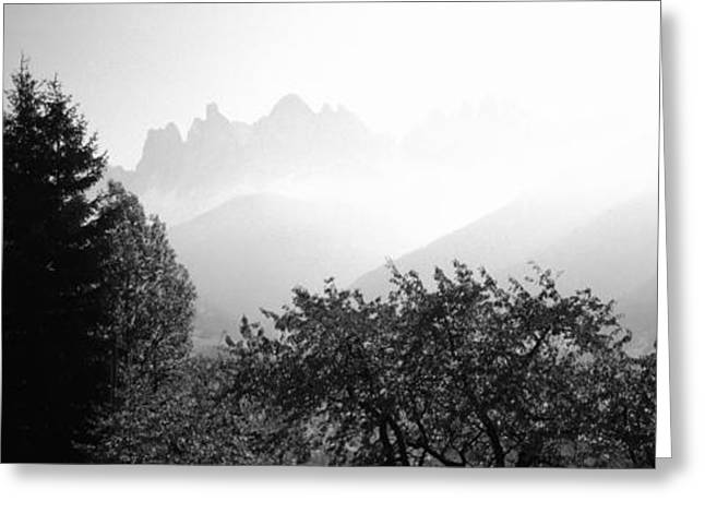 Trees On A Landscape, Dolomites, Alto Greeting Card by Panoramic Images