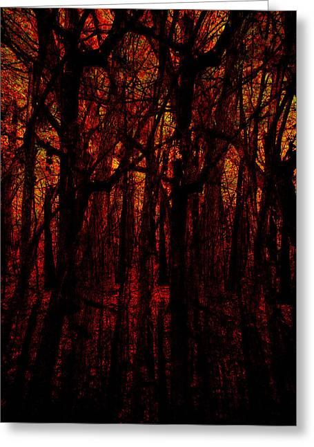 Trees On Fire Greeting Card