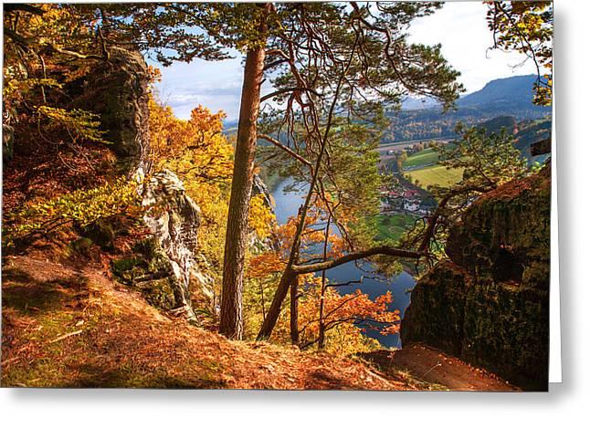 Trees On The Edge. Saxon Switzerland Greeting Card
