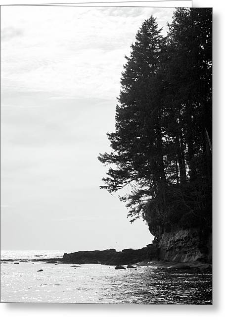 Trees Over The Ocean Greeting Card