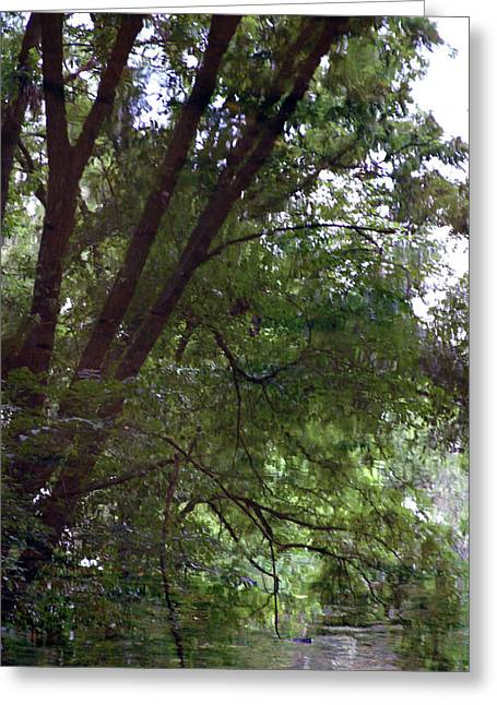 Trees Reflected In A Woodland Stream 2867 H_2 Greeting Card