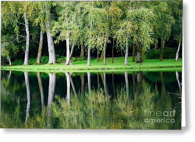 Trees Reflected In Water Greeting Card