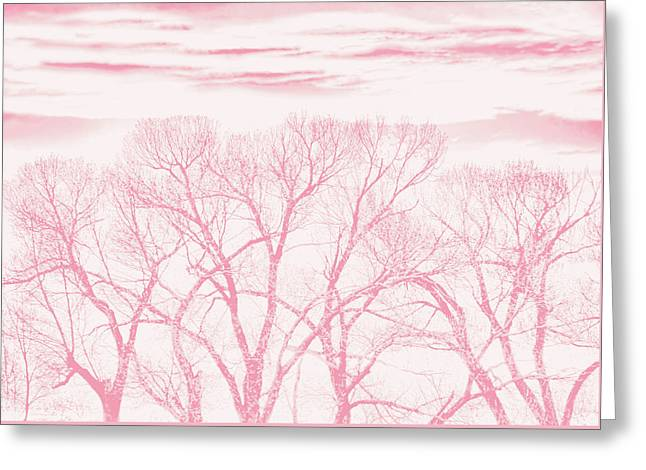 Greeting Card featuring the photograph Trees Silhouette Pink by Jennie Marie Schell