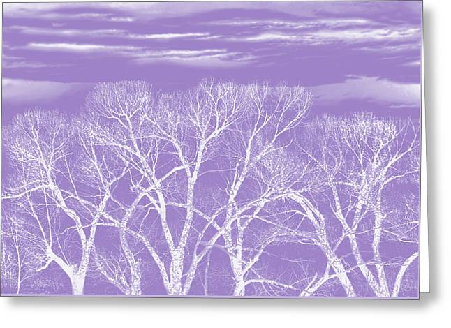 Greeting Card featuring the photograph Trees Silhouette Purple by Jennie Marie Schell
