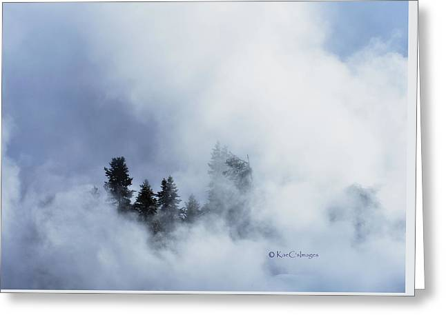 Trees Through Firehole River Mist Greeting Card