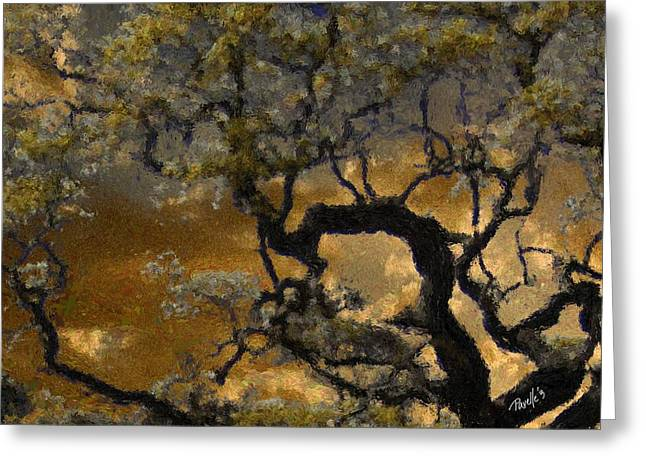Treetop Sunset Greeting Card by Jim Pavelle