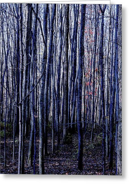 Treez Blue Greeting Card