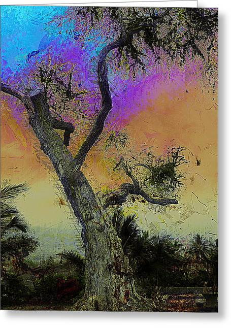 Greeting Card featuring the photograph Trembling Tree by Lori Seaman