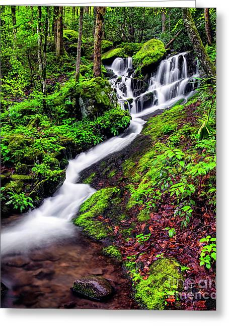 Tremont Area Waterfall Greeting Card by Madonna Martin
